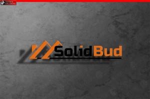 Logo SolidBud