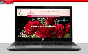 nowoczesne strony internetowe przeźmierowo  poznan Przeźmierowo Centrum Reklamowe